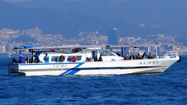 乗合船ネレウス5号