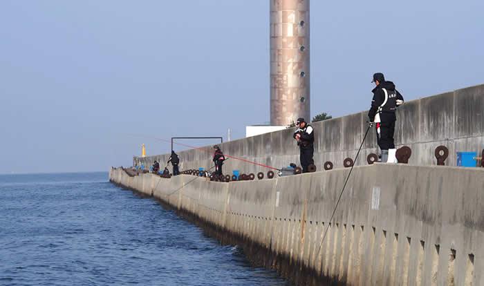 防波堤釣りの様子